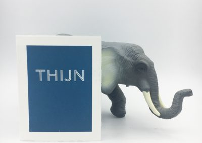 Geboortekaartje Thijn
